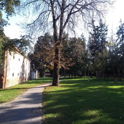 Pohľad na južnú časť parku